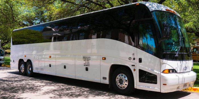 Bus company Bronx