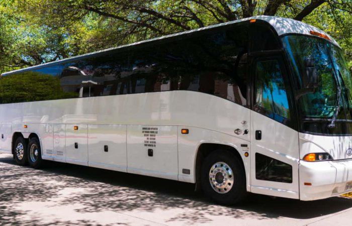Bus company Brooklyn
