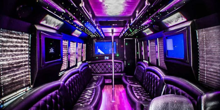 Party bus Bronx